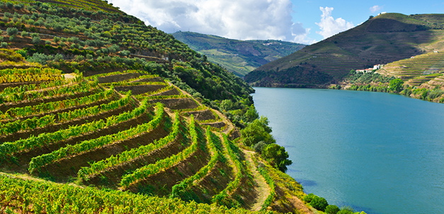 Das Weingebiet des Dourotals.