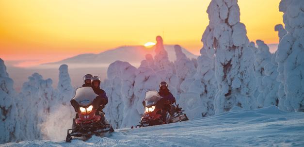 Geniesse den Winterwald während einer fahrt mit einem Schneescooter