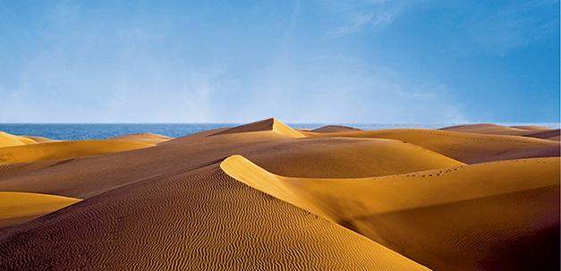 Die Sanddünen von Gran Canaria